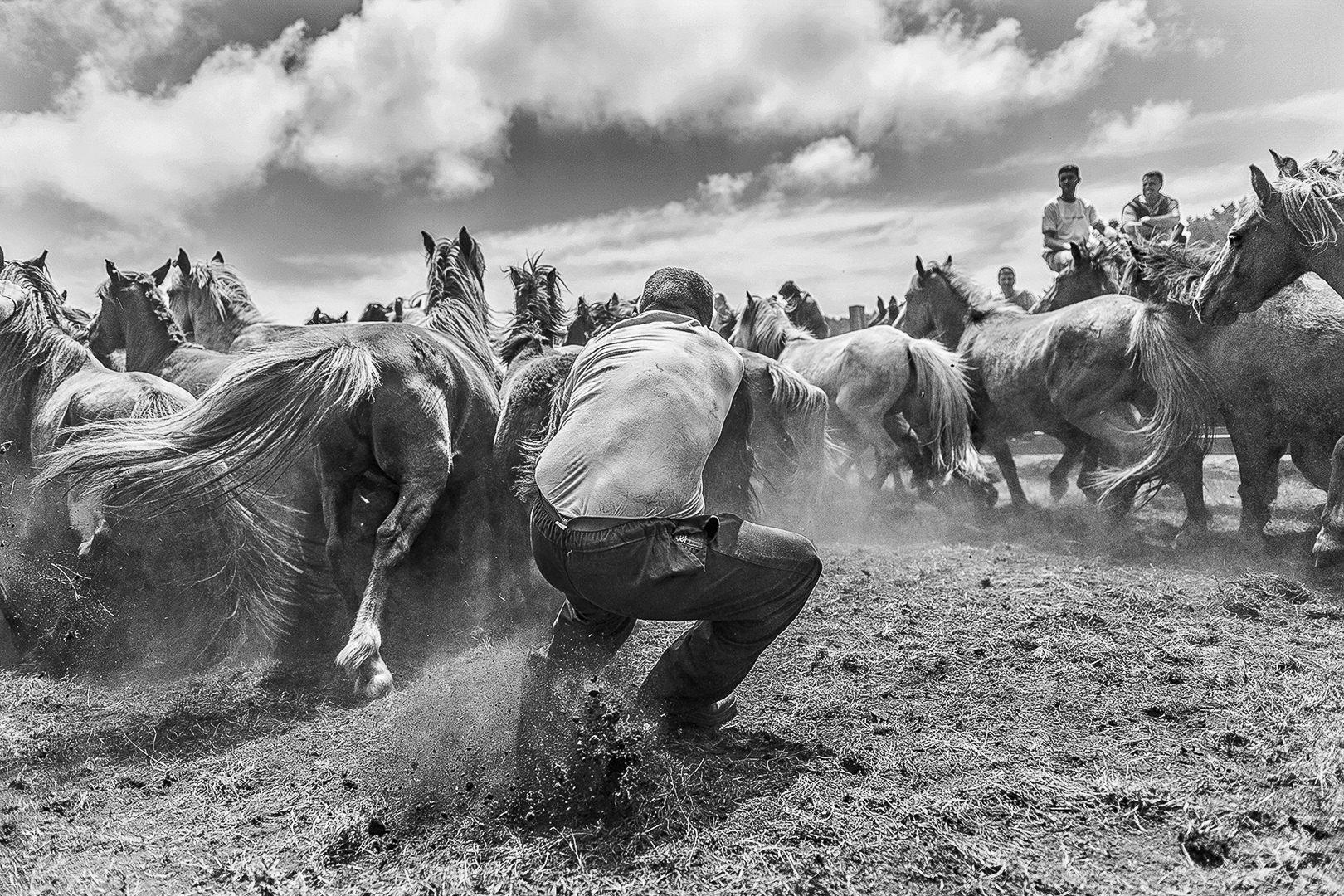 Marcos Rodríguez fotógrafo europeo del año 2017